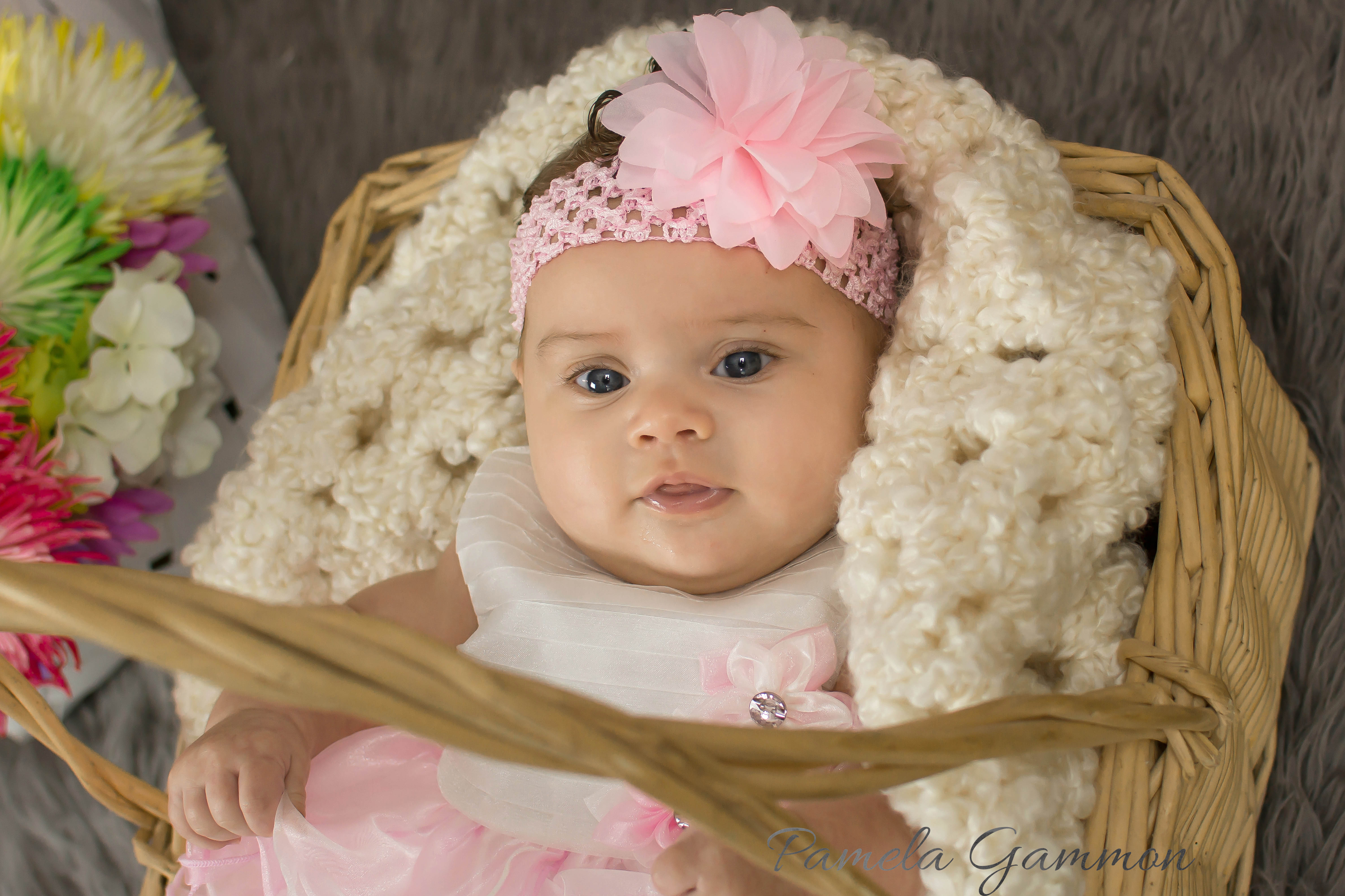 Akeeleighanna wheelersburg ohio baby photographer pamela gammon photography southern oh - Photography ideas for girl ...