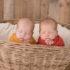 Kentucky Newborn Twin Photographer | Duke & Kiser