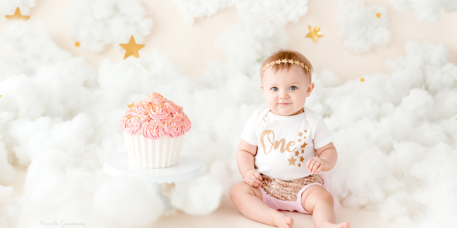 Twinkle Twinkle Little Star Cake Smash Session KY
