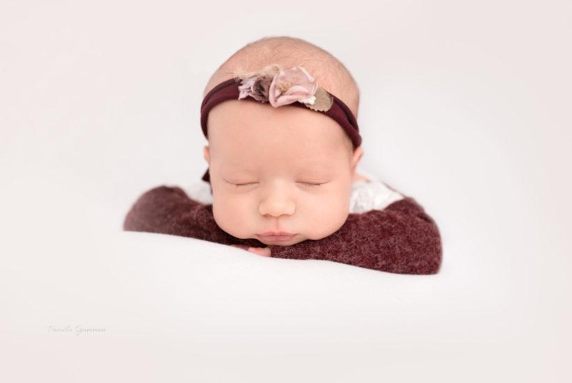 Newborn Photos Minford Ohio